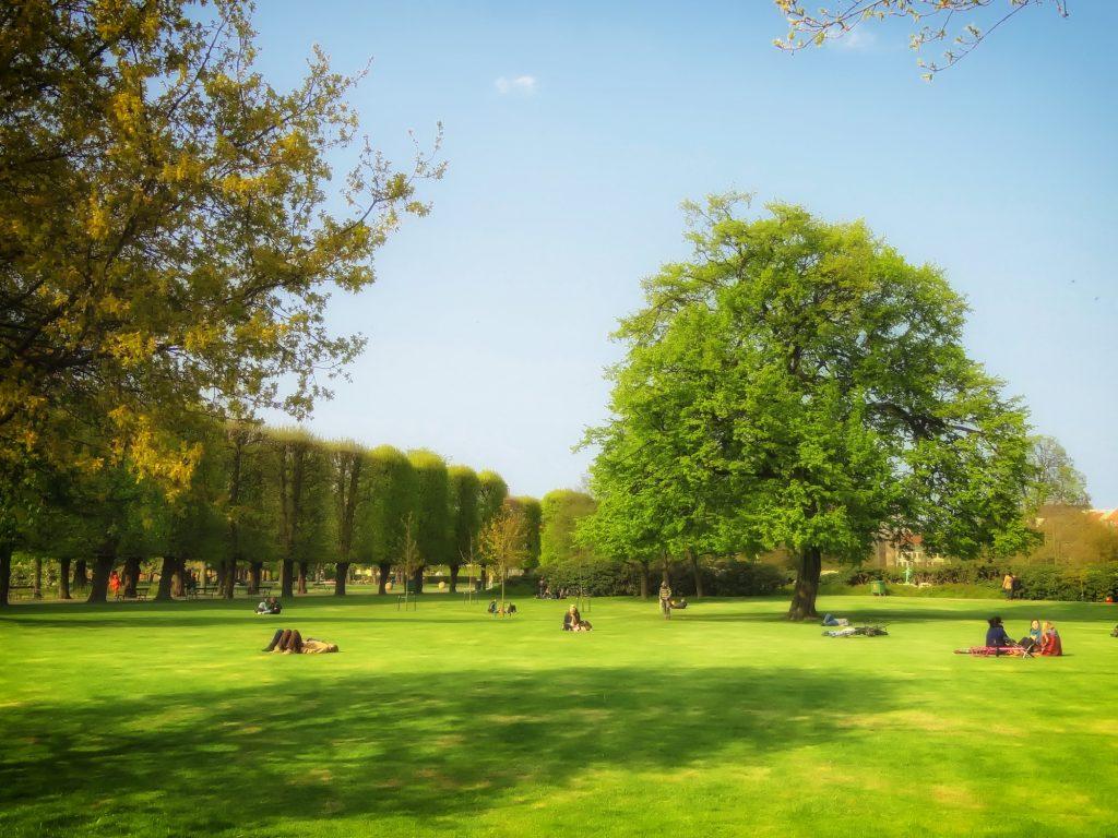 בין אביב לקיץ בקופנהגן. צילום מתוך Pixabay
