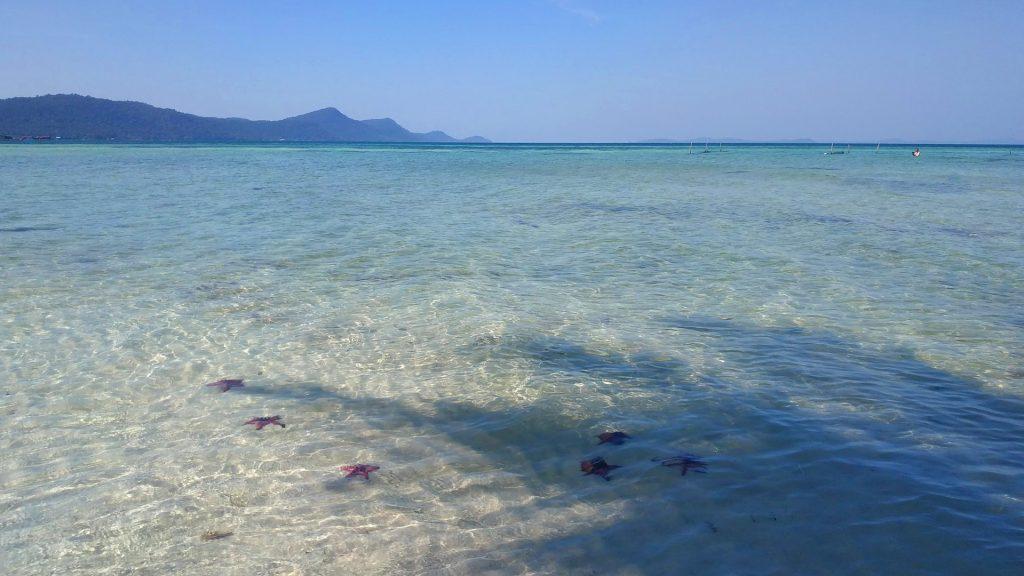 חוף כוכבי הים. צילום: שגיא סולומון